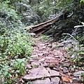 01Dalat 02Ta Nung Valley18.JPG