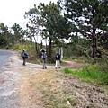 01Dalat 02Ta Nung Valley02.JPG