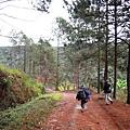 01Dalat 02Ta Nung Valley03.JPG
