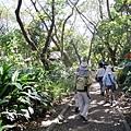 02菲律賓巴拉旺10鱷魚農場.JPG