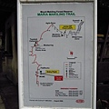 01菲律賓Mt Makiling11.JPG