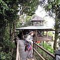 03Cat Tien NP 03鱷魚湖07.JPG