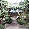 02菲律賓巴拉旺107鱷魚農場.JPG