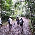 01菲律賓Mt Makiling15.JPG