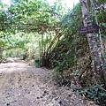 03Cat Tien NP 03鱷魚湖15.JPG