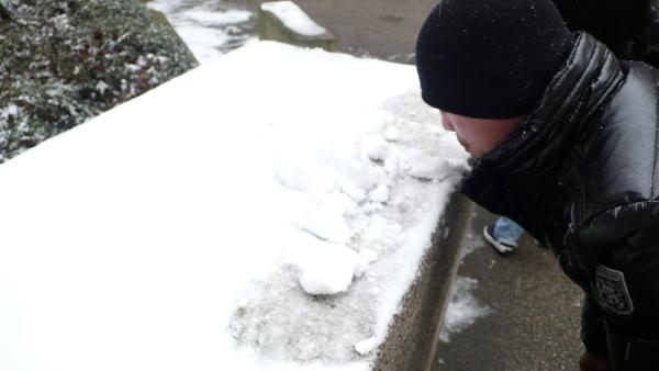 配  道地的法國雪花冰