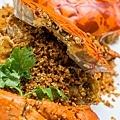 大螃蟹-2063