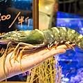 大螃蟹-2094