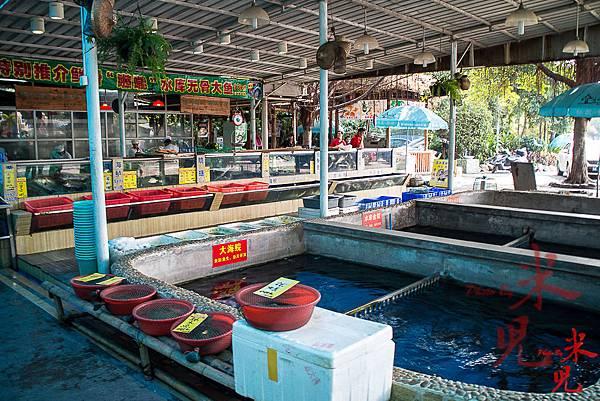 魚米之鄉-9056.jpg