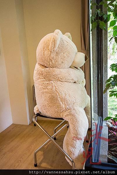 有熊的森林-15.jpg