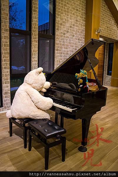有熊的森林-4107.jpg