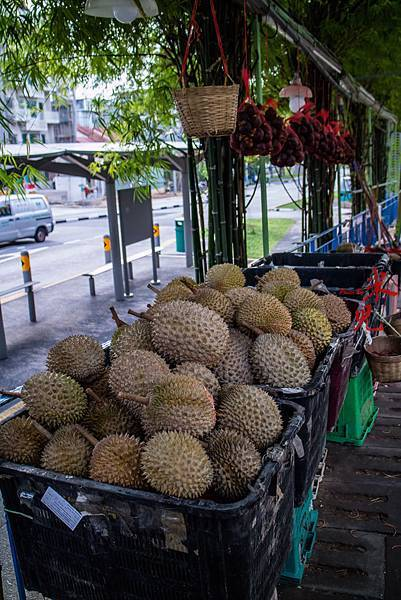 SINGAPOR-1308.jpg