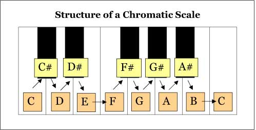 Chromatic-Scale-Structure.jpg