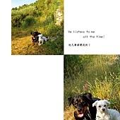 狗寶貝_頁面_108.jpg