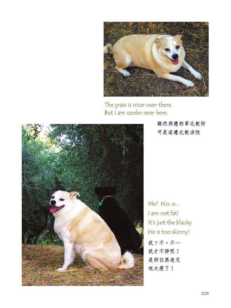 狗寶貝_頁面_248.jpg