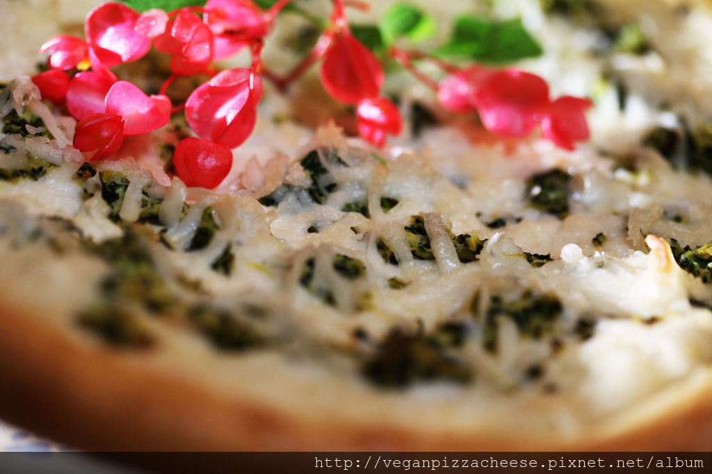 櫛瓜純素披薩