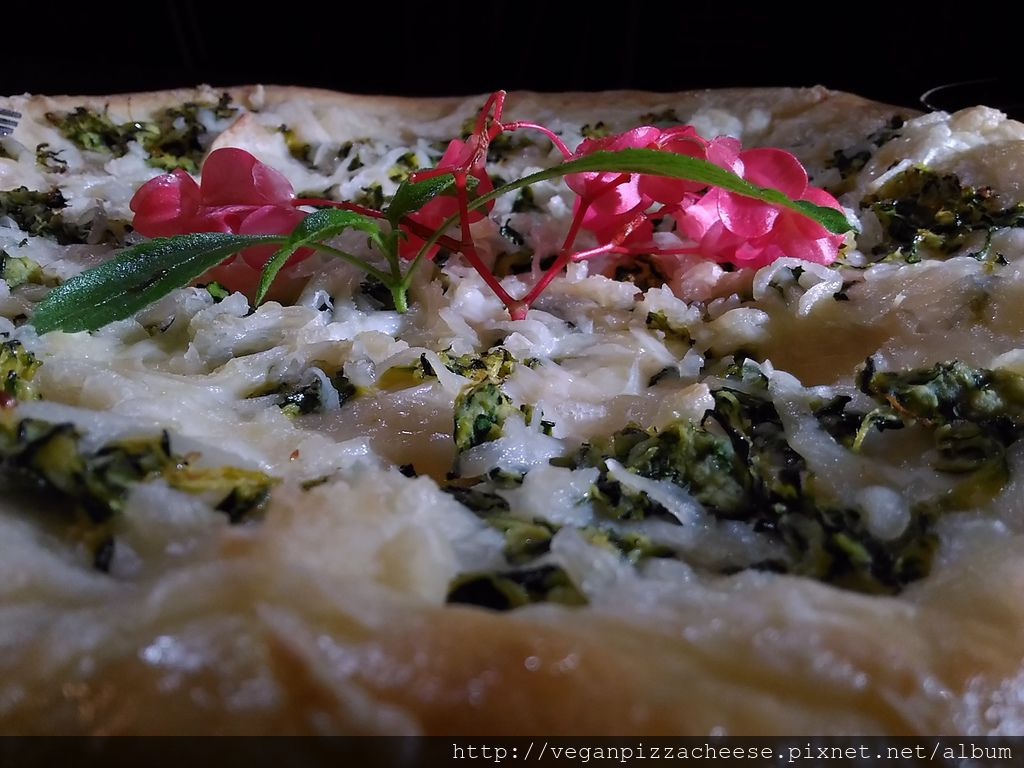 櫛瓜素食披薩pizza
