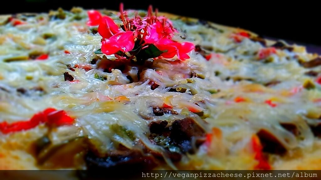 墨西哥辣椒素食純素披薩