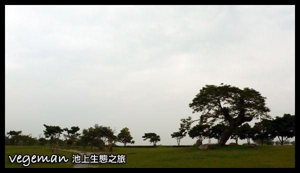 P1390703.jpg