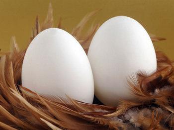 雞蛋買回來,不要先洗再冰