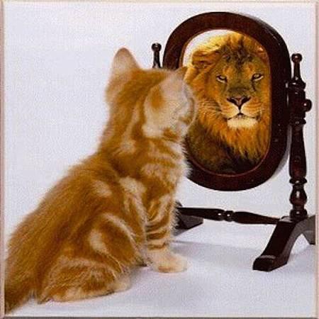 看大自己,就沒有極限。