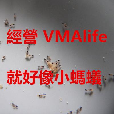經營 VMAlife 就好像小螞蟻