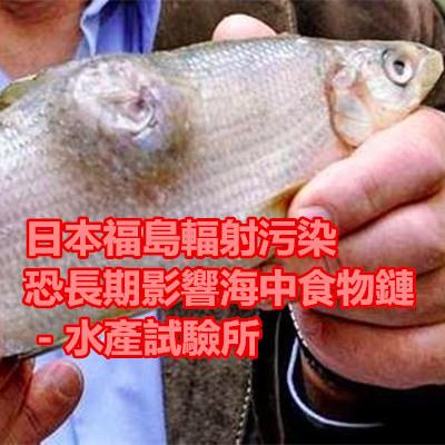 日本福島輻射污染恐長期影響海中食物鏈 - 水產試驗所