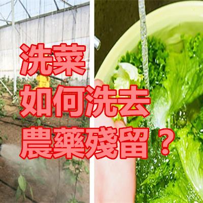洗菜如何洗去農藥殘留?