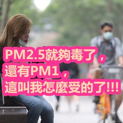 PM2.5就夠毒了,還有PM1,這叫我怎麼受的了!!!