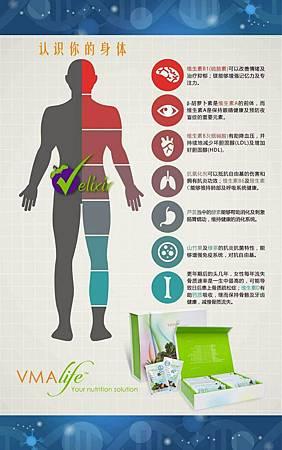認識你的身體