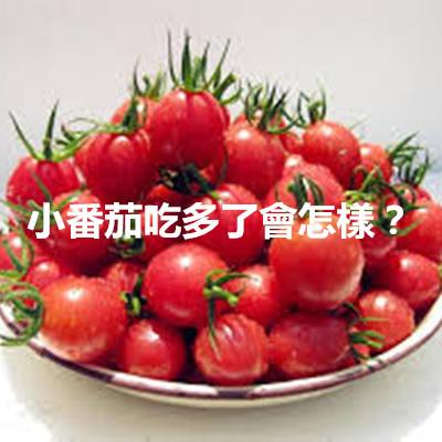 小番茄吃多了會怎樣?.jpg