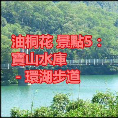 油桐花 景點5:寶山水庫-環湖步道.jpg