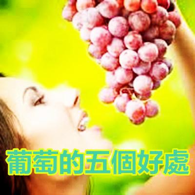 葡萄的五個好處.jpg
