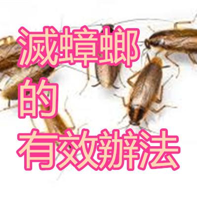 滅蟑螂的有效辦法.jpg