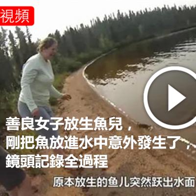 善良女子放生魚兒,剛把魚放進水中意外發生了,鏡頭記錄全過程.png