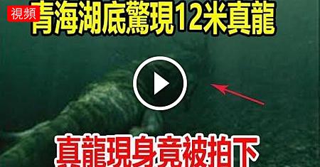 青海湖底發現12米真龍,真龍現身竟被拍下,專家調查結果.png