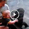 嬰兒和黑猩猩行為交流.png