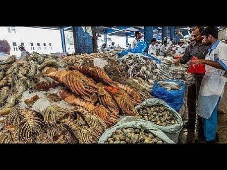 杜拜的土豪平時都吃什麼?看完杜拜的菜市場,真是長見識了!.jpg