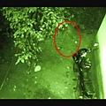 ♥ [影片分享] 監控拍到鬼魂從房間出來, 在門口徘徊, 科學都無法解釋!.jpg