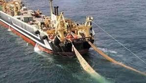 ♥ [影片分享] 世界上最大的漁船造價4億,看到捕魚過程,真是為魚都在擔心.jpg