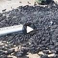 ❤ [影片分享] 一輛水車駛入非洲草原,上千隻水牛蜂擁而上,下一秒感動落淚!.jpg