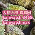 大榴莲群 看看网 kanwatch 3465 kanwatchmax.jpg