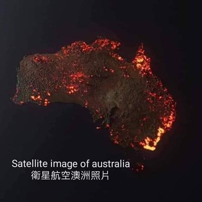 5億動物慘死,千人棄城逃難!澳洲還在燒,何時才燒完?.jpg