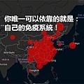 如果臺灣爆發跟日本、韓國一樣的社區感染,你唯一可以依靠的就是:自己的免疫系統!.jpg
