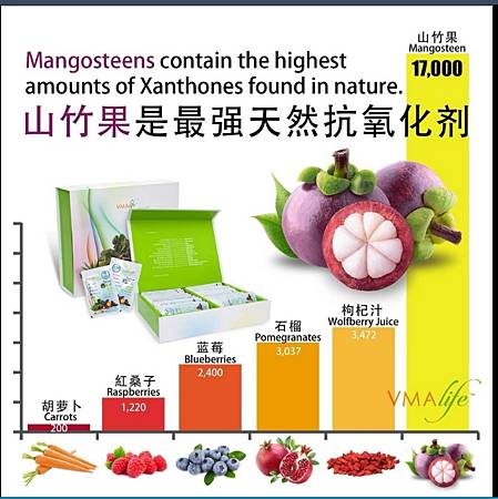 山竹果是最強天然抗氧化劑.jpg