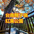 台南關子嶺紅葉公園.jpg