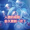 人體的細胞多久更新一次?.jpg