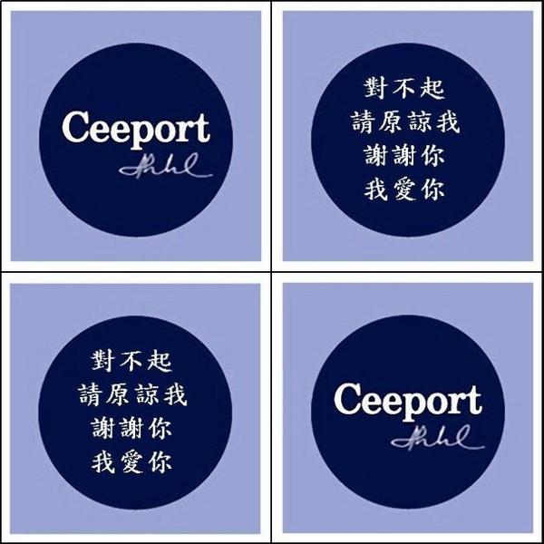 Ceeport 4.jpg