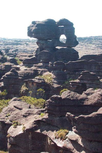 398px-Roraima-Tepui_Plateau.jpg