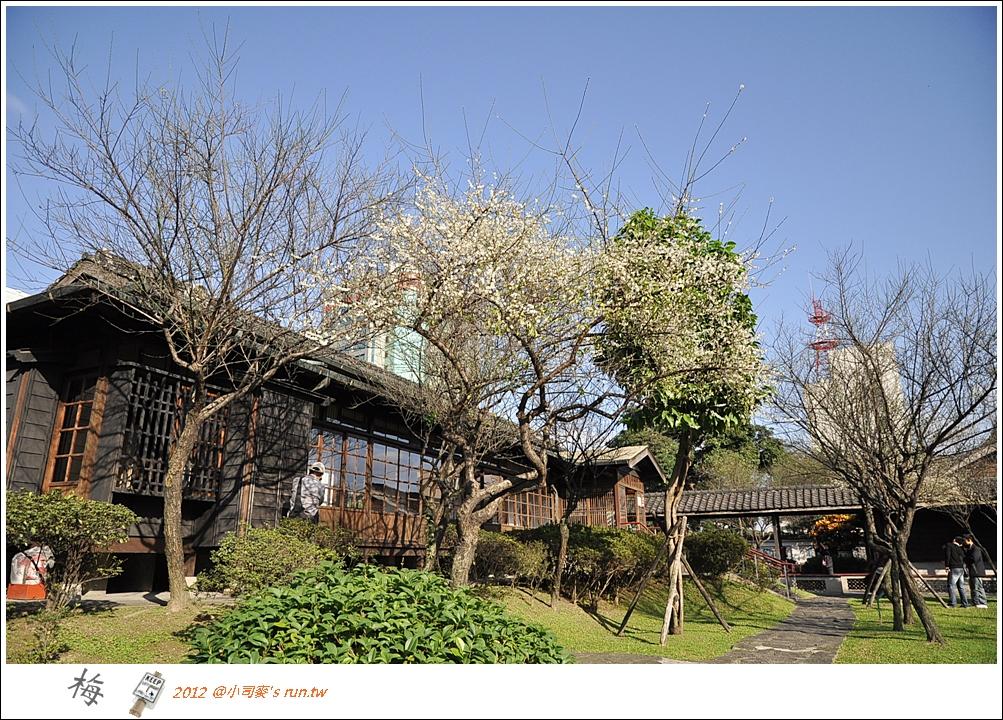 2012小司麥-梅花- (3).JPG